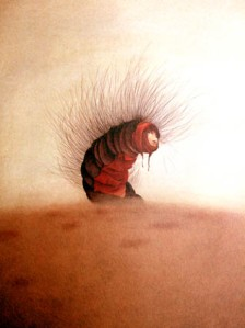 L'Eruga, segons Dautremer. Fitxa 21