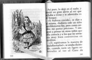 L'Alícia bonsai. pàgines interiors.