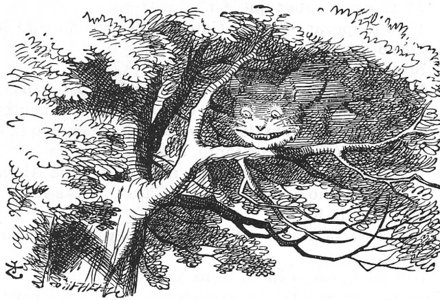 El Gat de Cheshire evanescent