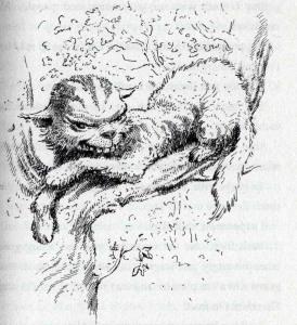 El Gat de Cheshire. Il·lustració de Mervyn Peake. Fitxa 189. Fes clic per ampliar.