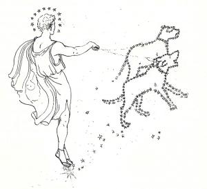 Fitxa 258. Una de les figures del llibre: les estrelles de l'Ossa Major. Fes clic per ampliar.