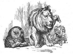 Un berenar amb animals. Fes clic per ampliar.